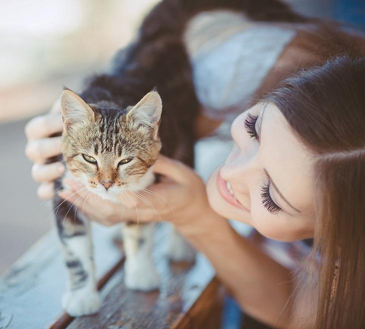 Передача энтеробиоза от кошки во время поглаживания рукой по шерсти