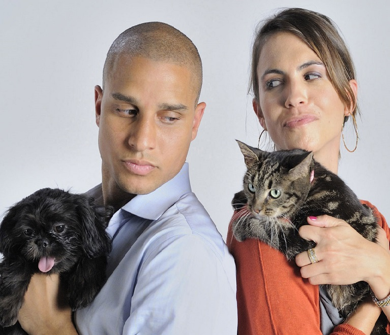 Кошка и собака переносчики токсокароза