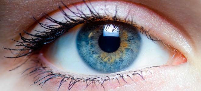 Глисты в глазах и как их лечить