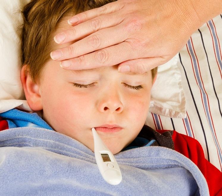 Высокая температура (лихорадка) - проявление токсокароза