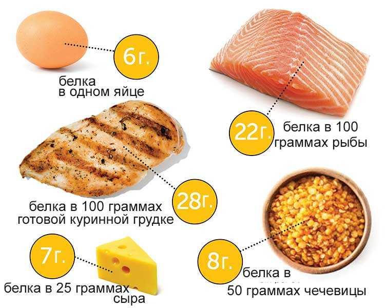 Полезные белковые продукты