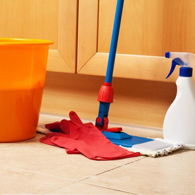 Влажная уборка в доме - профилактика заражения глистами