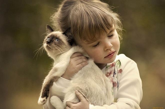 Контакт ребенка с котом - путь заражения токсокароза
