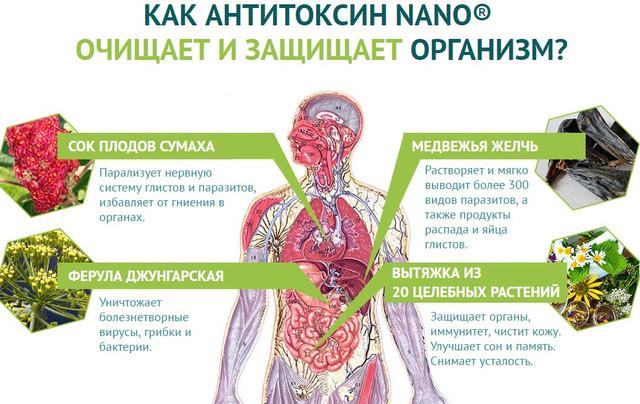 антитоксин нано