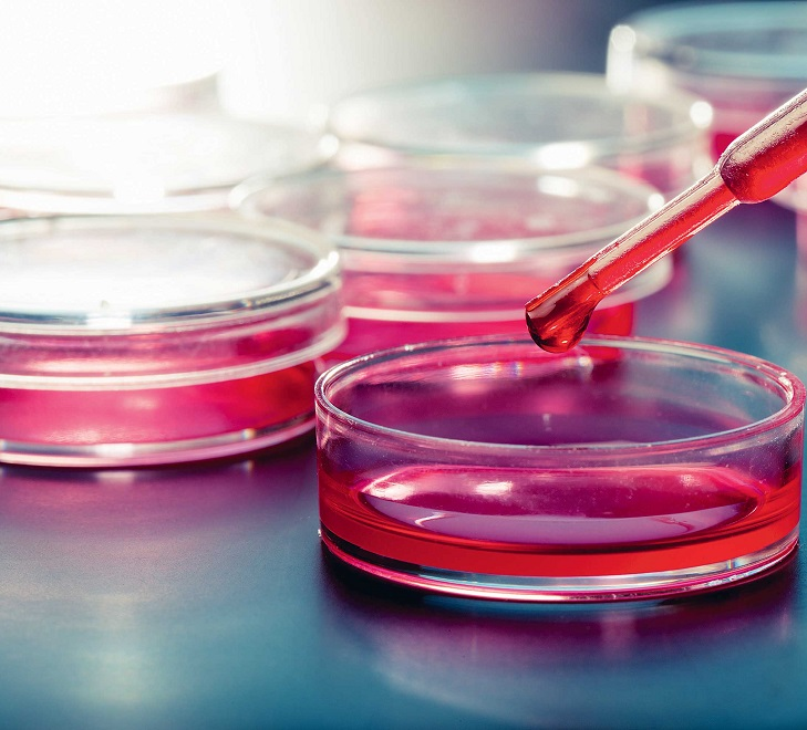 Анализ крови на паразитов