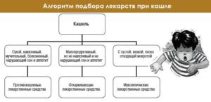 Алгоритм подбора лекарств при кашле