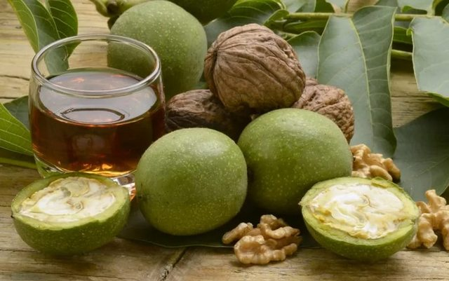 Применение настойки зеленого грецкого ореха