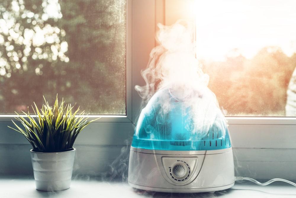 Как выбрать увлажнитель воздуха для дома?