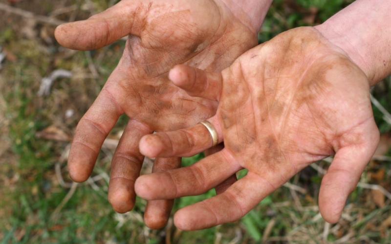 Пути заражения глистами от человека к человеку