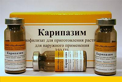 Растительное лекарство Карипазим. Применение при грыже позвоночника