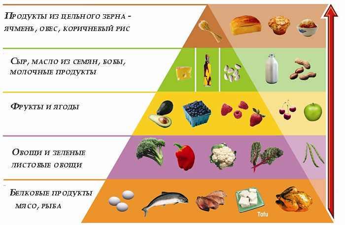 Пирамида питания на диете Аткинса