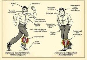 Преимущества повышенного тестостерона