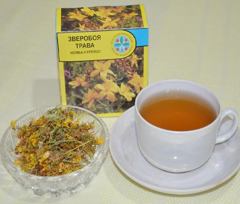 Трава зверобой и чашка с травяным чаем на основе зверобоя