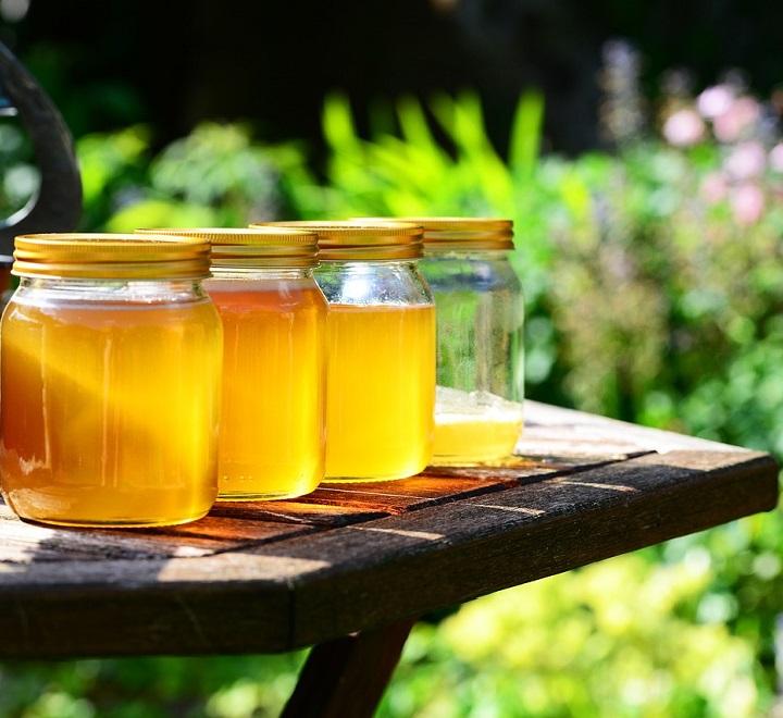 Мед в сочетании с полынью действенное средство при лечение токсокароза