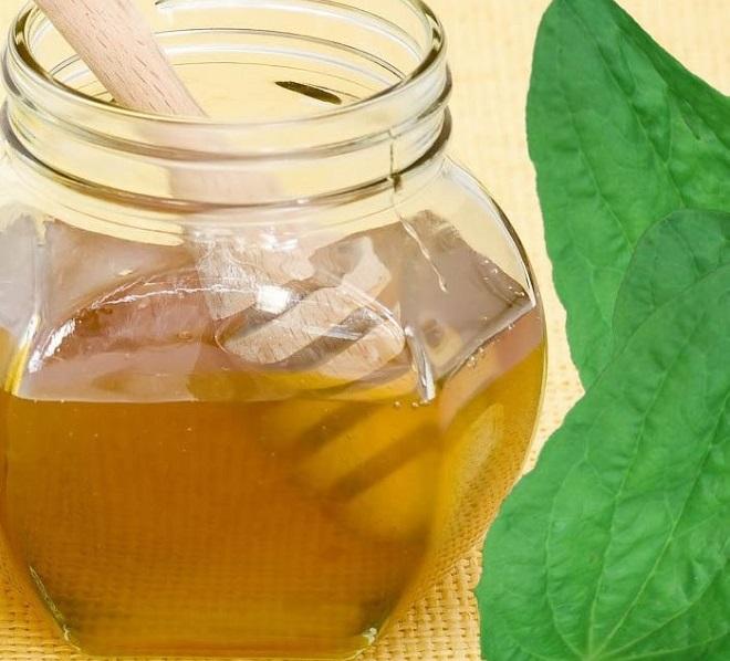 Листья подорожника с медом - средство от лямблий