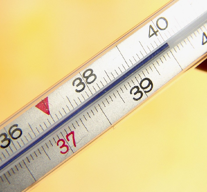 Температура тела 40 градусов возможный симптом описторхоза
