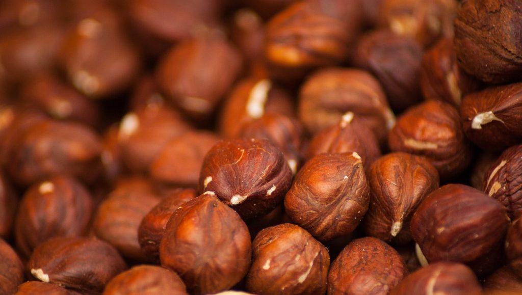 Орех фундук польза и вред
