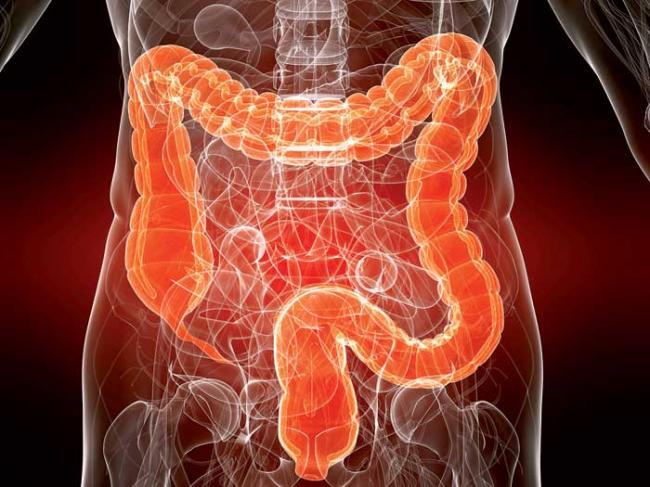 влияние на кишечник