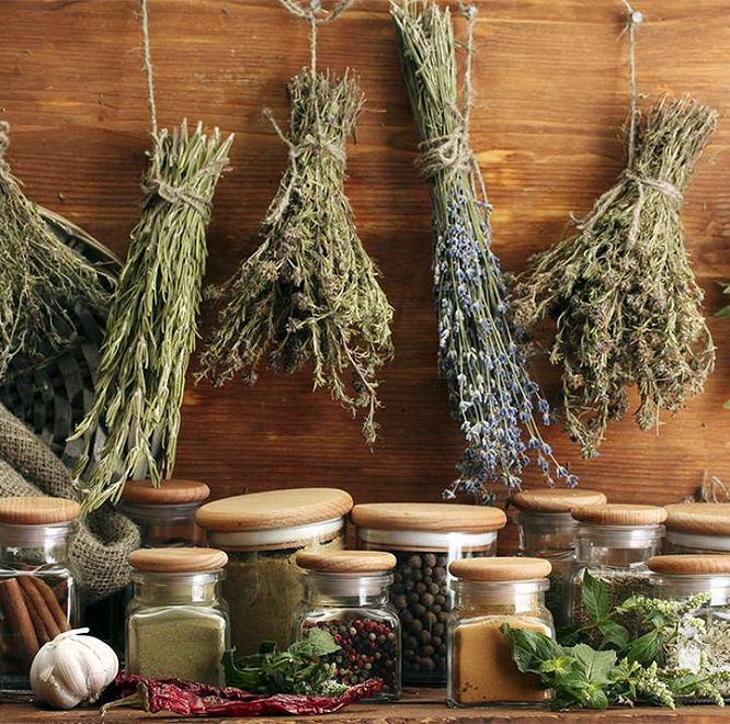 Травы, натуральные продукты для лечения глистов у детей