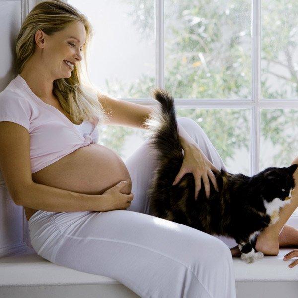 Токсоплазмоз при беременности симптомы, диагностика и лечение