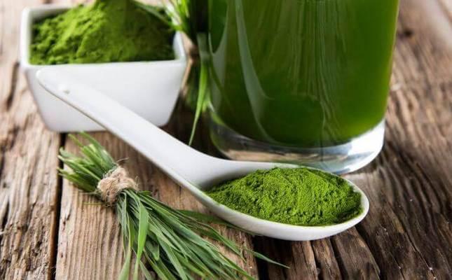 Экстракт зеленого чая и средства на его основе: что надо знать