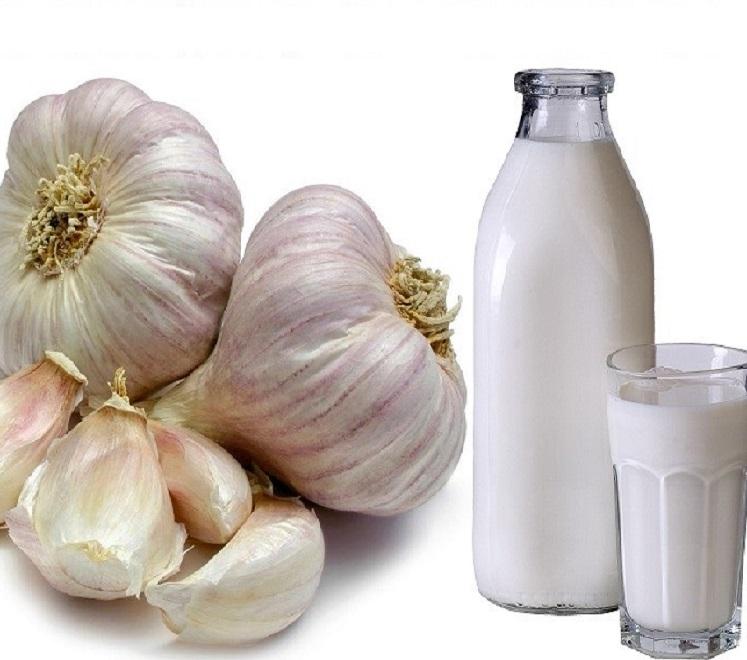 Чеснок и молоко - средство для лечение токсокароза