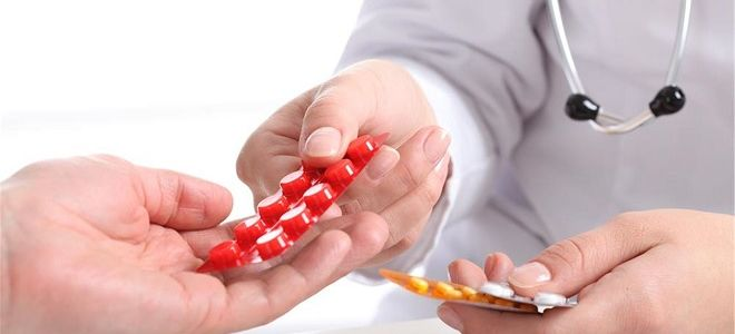 Симптомы и лечение токсокароза у взрослых