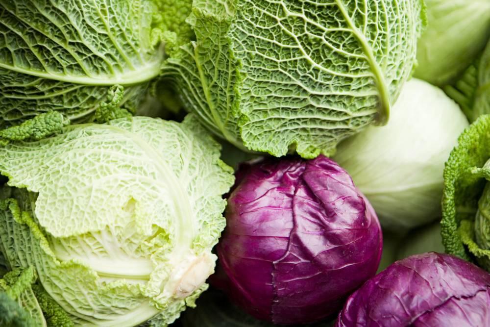 Капустная диета для похудения: лучшие рецепты и меню на неделю