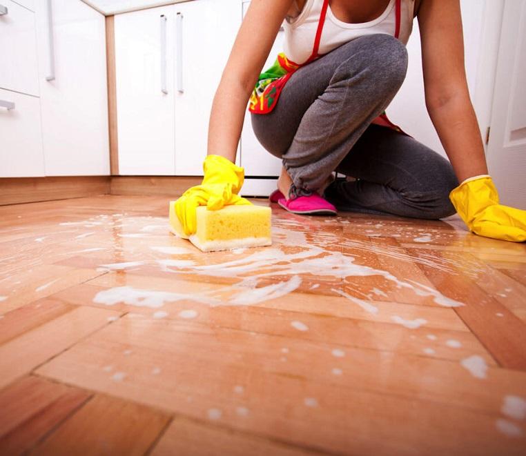 Влажная уборка в доме - профилактика токсокароза
