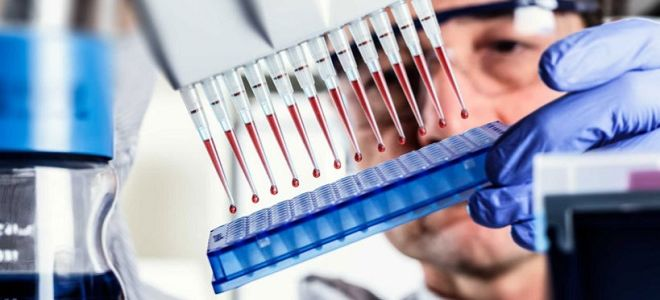 Антитела токсокар в крови