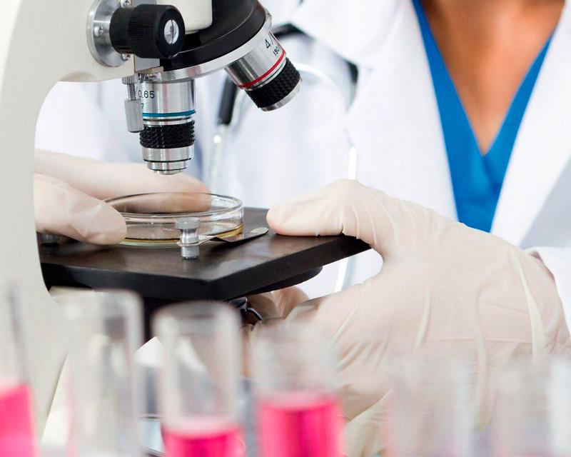 Проверка анализов на глисты